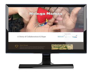 websites-msinga